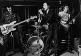 Sex Pistols перезапишут свою песню для Guitar Hero