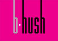 Панорамный лаунж-бар b-hush
