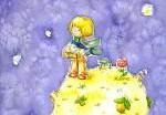 Французы снимут Маленького принца в 3D
