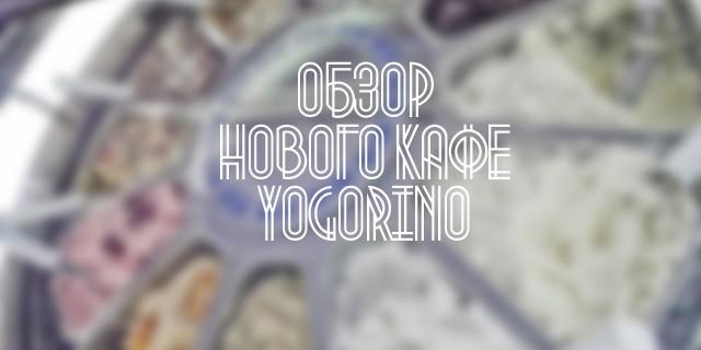 Обзор нового кафе Yogorino