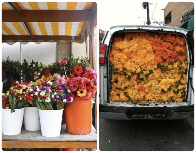 Купить дешевые цветы киеве букет мимозы купить киев