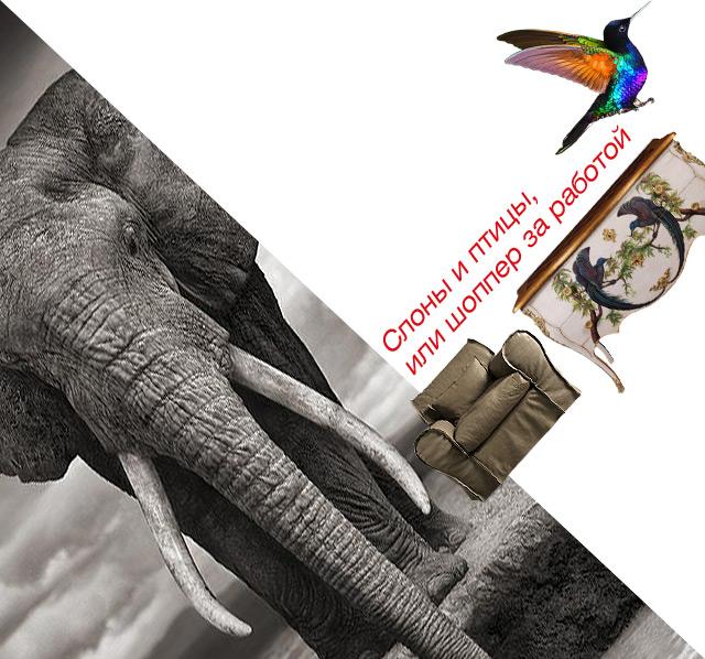 Слоны и птицы, или шоппер за работой