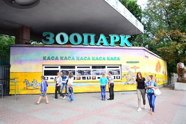 Зоопарк, Киев, Арт