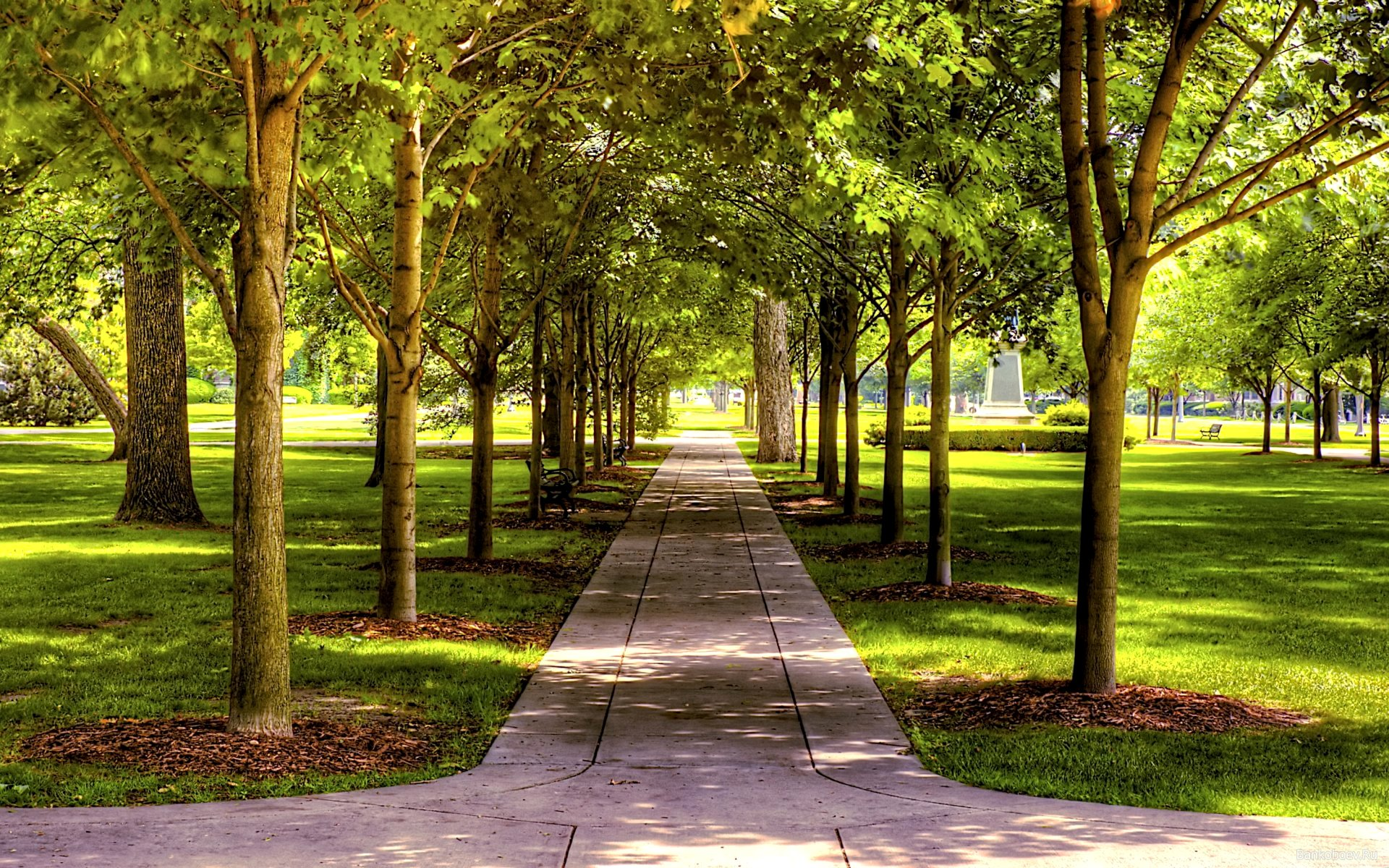 В городе появятся новые парки