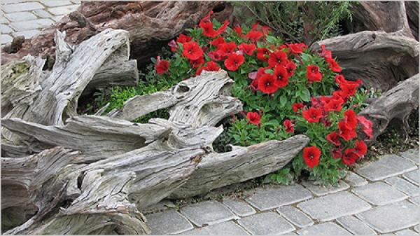 Объекты лэнд-арта создают из стволов и ветвей деревьев, которые были сломаны ветром