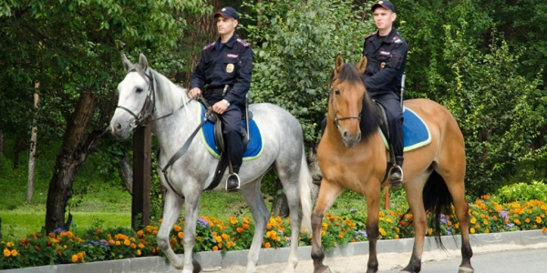 Кроме того, по словам Фацевича, в Киеве в два раза увеличилось количество обращений граждан к патрульной полиции