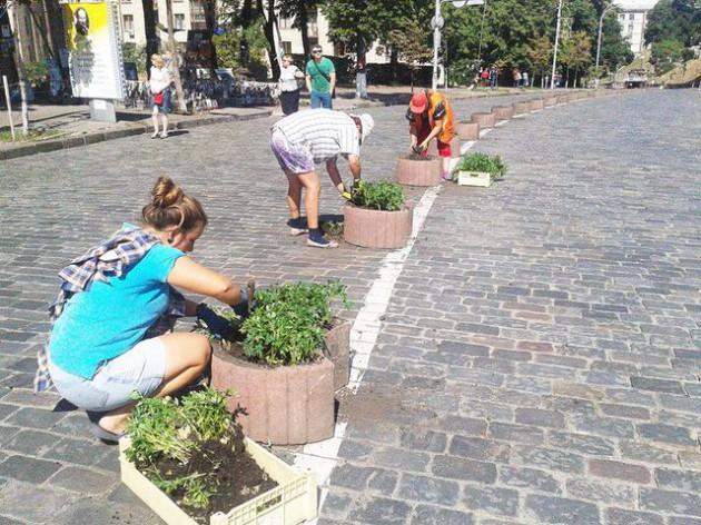 Вдоль распределительной полосы установили бетонные вазы и высадили цветы