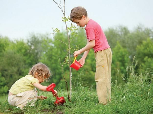 """С сегодняшнего дня в столице стартовал проект """"Посади дерево"""""""