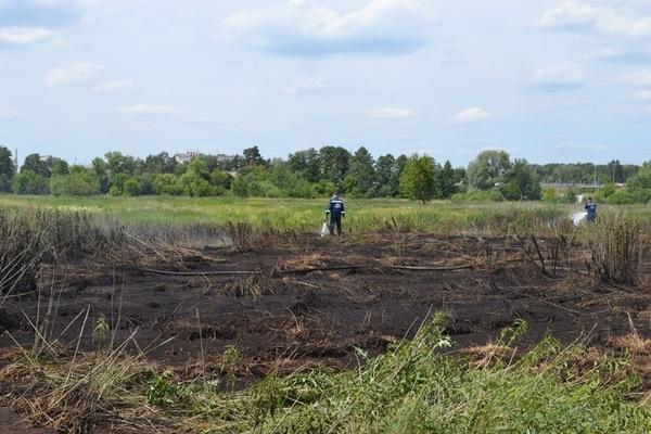 Пожары торфяников в Киевской области не несут в себе чрезвычайной угрозы