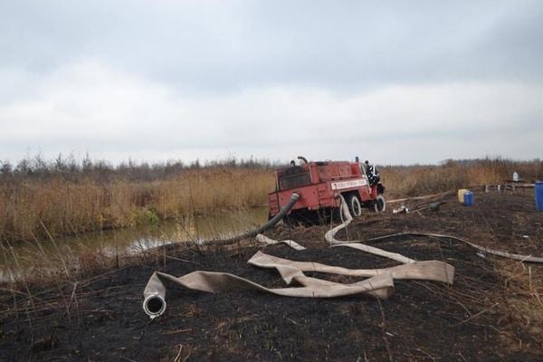 Площадь горения уменьшилась до 52 гектаров