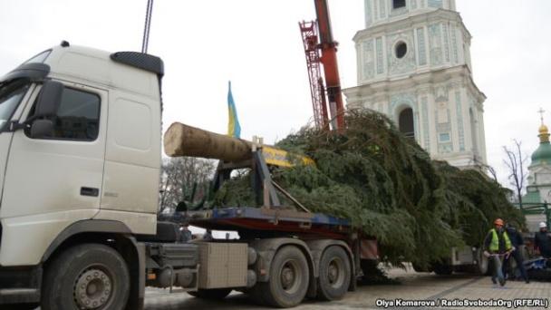 Нынешняя елка на один метр выше своей предшественницы