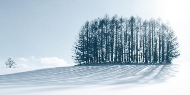 Не проспи январь: лучшие события месяца