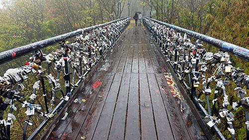 Новое покрытие моста должно прослужить полвека