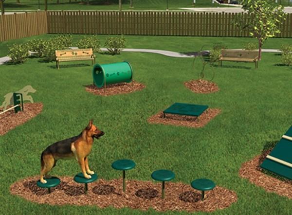 """В парке планируют установить различные полосы препятствия и """"тренажеры"""" для животных"""