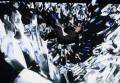 Евровидение 2016 первый полуфинал: фото с выступления России