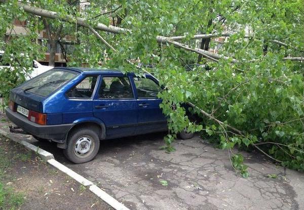 Помимо дождя в Киеве поднялся сильный ветер