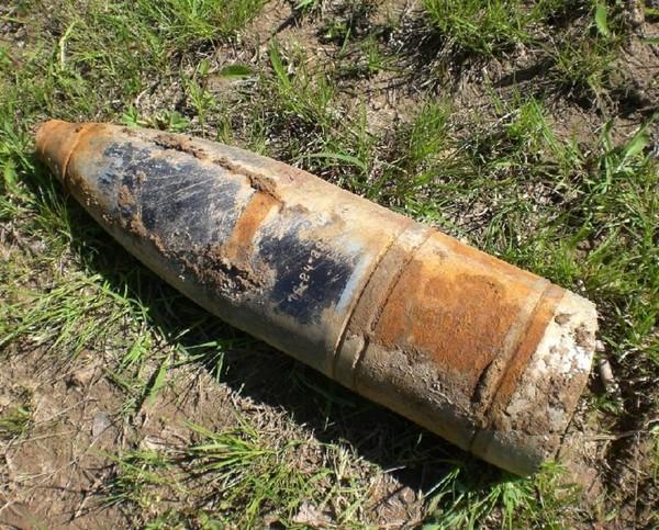 Опасный предмет обнаружили работники ботсада