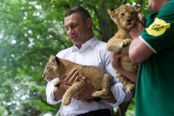 Кличко рассказал о достижениях нового руководства зоопарка