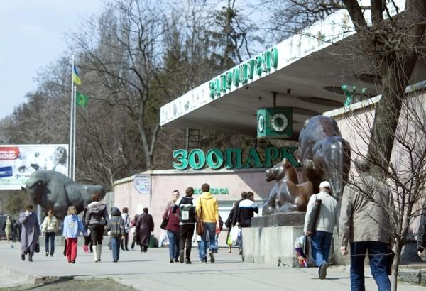 Реконструкция зоопарка начнется со строительства нового центрального входа с новыми кассами, большим экскурсбюро и медицинским пунктом