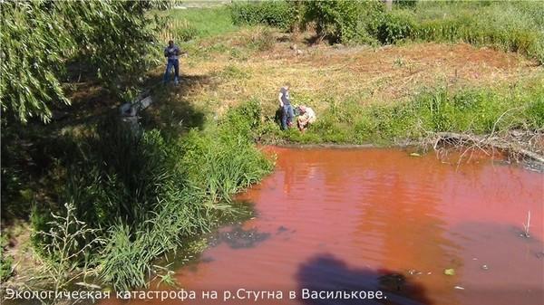 Жителей предупредили о временном запрете на купание в реке