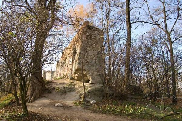 Також тут можна полазити на залишках мурів замку ХІІІ століття. Фото m.io.ua