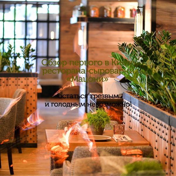 Обзор первого в Киеве ресторана-сыроварни «Мацони»: остаться трезвым и голодным невозможно!