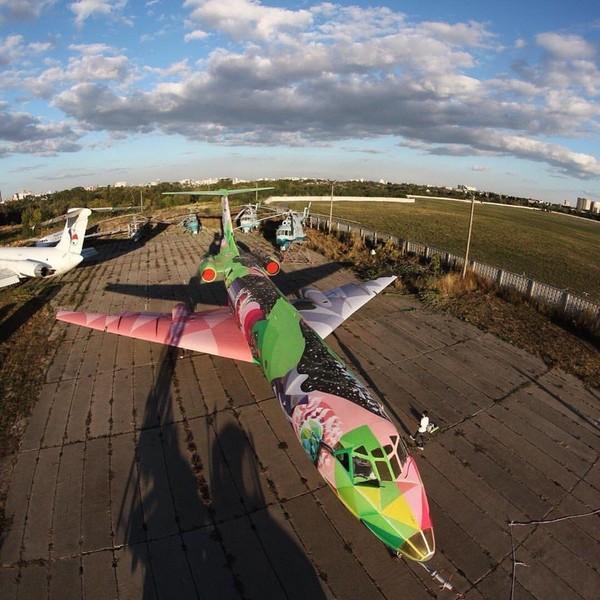 Над воздушным лайнером работал украинский художник