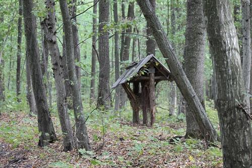 Прокуратура отсудила у частного общества 976,6 га земель в Бориспольском районе Киевской области