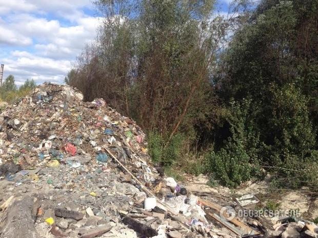 Рядом с озером Алмазное в Деснянском районе Киева неизвестные устроили полигон для отходов