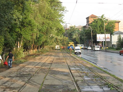 В КГГА решили увеличить пропускную способность улицы Кирилловской