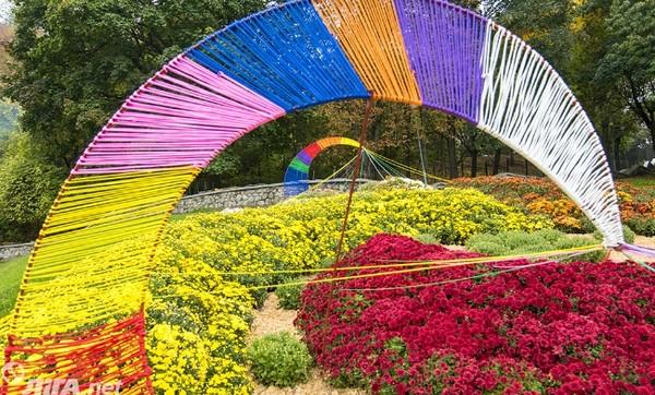 Композицию на Певчем поле планируют внести в Национальный реестр рекордов как самую большую 3D-композицию из хризантем