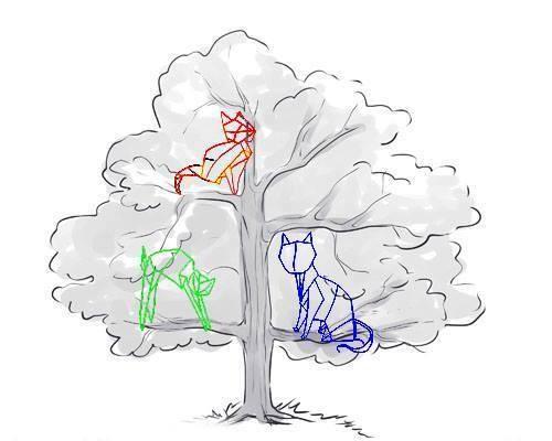 Первоначальная идея – котики на дереве