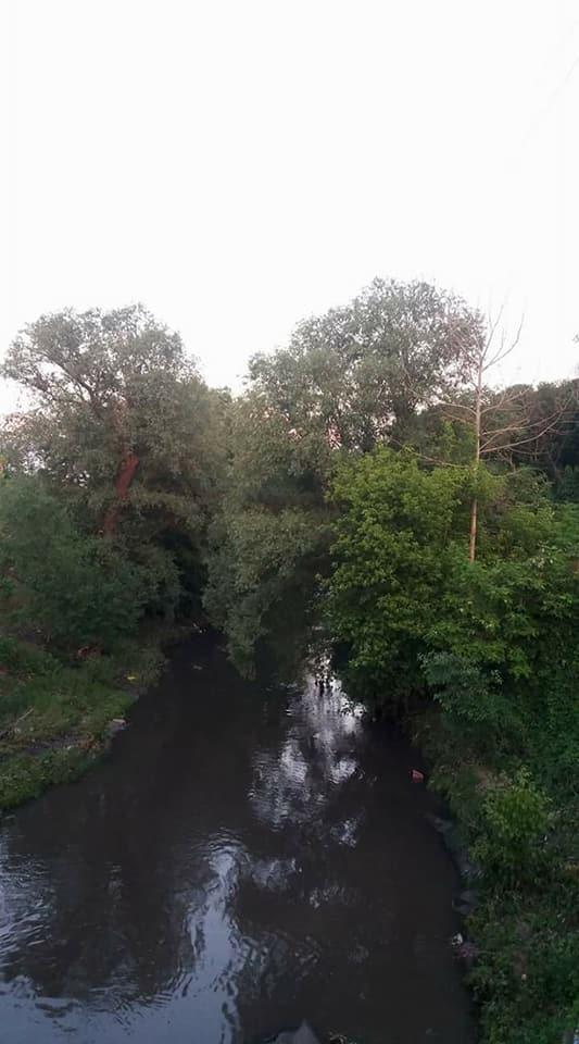 Вот так берега реки выглядели еще недавно