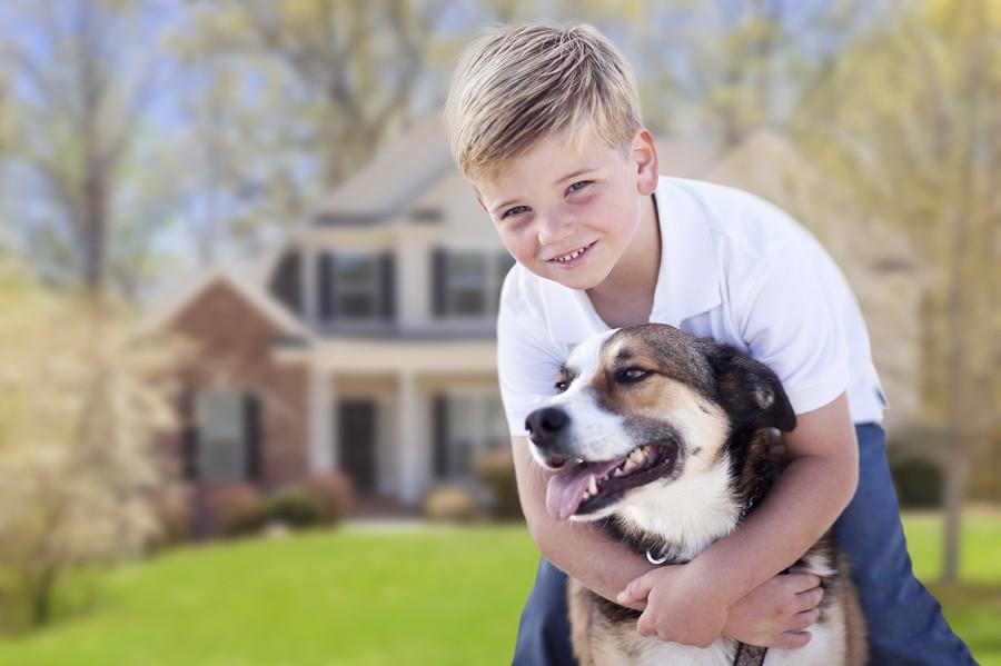 В Киеве проходит бесплатное обучение дрессировке собак для детей
