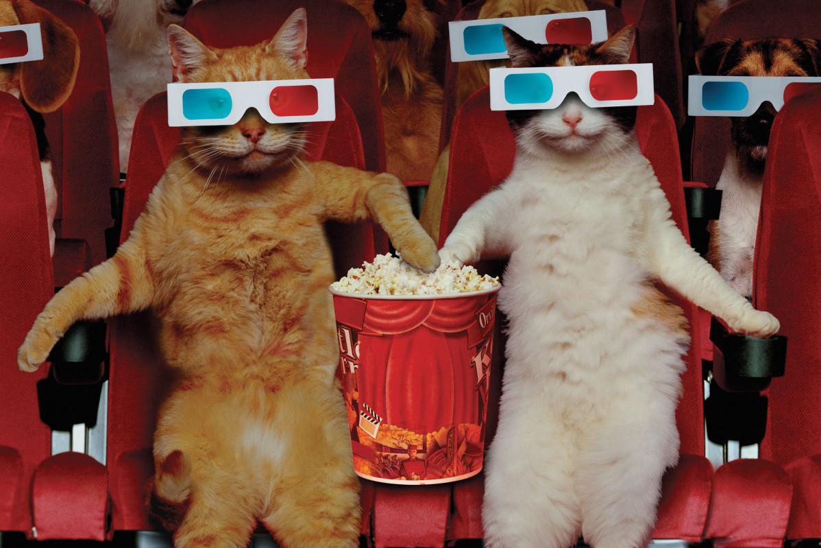 В Киеве открыли новый кинотеатр. Фото