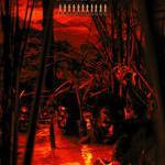 Воины джунглей