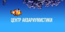Киевский частный океанариум