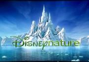 Компания Disney основала «эко» киностудию