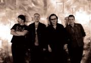 U2 продали картину Баскиа за 5 миллионов фунтов стерлингов
