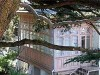 В Великобритании стартовала кампания по сбору средств на ремонт дома-музея Чехова в Ялте