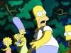 «Свидетелю», Comedy и «Симпсонам» нет места на ТВ