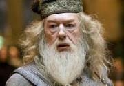 """Исполнитель роли Дамблдора никогда не читал """"Гарри Поттера"""""""