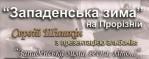 Выступление Сергея Шишкина
