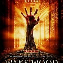 Wake Wood