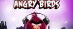 Angry Birds. Summer season in Kiev