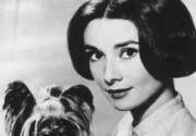 Первой красавицей кинематографа признана Одри Хепберн