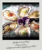Ресторан паназиатской кухни SOMA приглашает ценителей истинных гастрономических удовольствый на Устричный Уикенд
