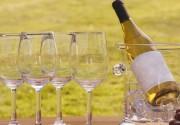 26 апреля в 20:00 Италия расскажет обо всем богатстве вин