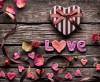 День влюбленных в кафе РУККОЛА