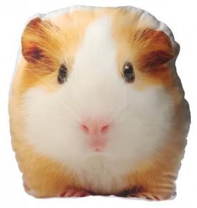 Подушка «Морская свинка»